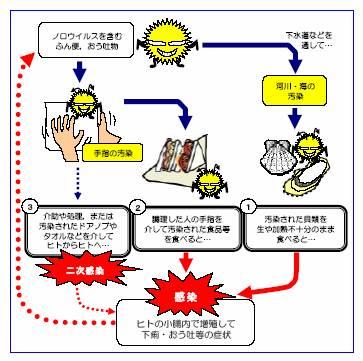 胃腸 炎 感染 経路